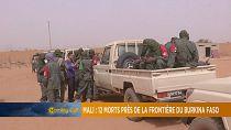 12 killed in northern Mali attack