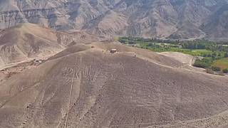 Archaeologists find new geoglyphs in Southern Peru