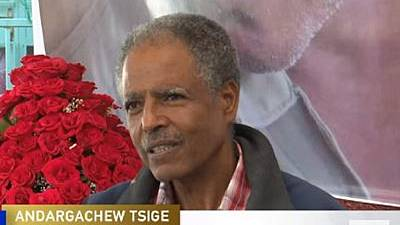 Complexities of Ethiopia's problems mentally burdens freed Andargachew