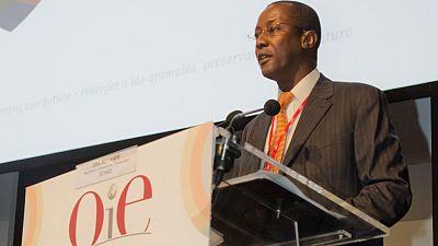 Tchad : l'ex-directeur de cabinet de Déby aux arrêts