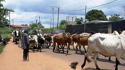 Les kidnappings dans le nord du Nigeria sont devenus monnaie courante