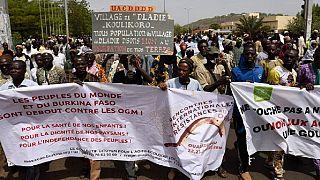 Burkina Faso : manifestation contre les OGM