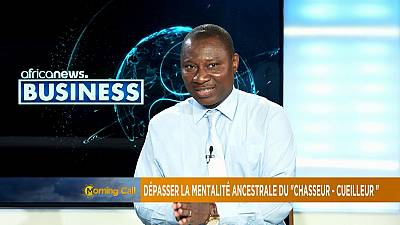 Utilizing natural resources in Africa [Business segment]
