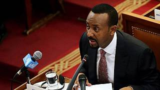 Ethiopian PM replaces army chief in major shakeup