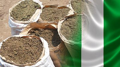 Nigerian authorities seize 3 tonnes of cannabis