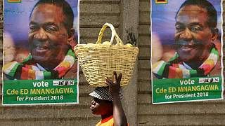 Zimbabwe's Mnangagwa queues for fried chicken in election stunt