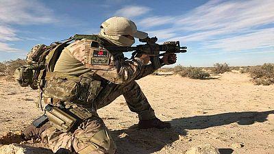 Seven Islamist militants surrender in southern Algeria: ministry