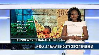 L'Angola veut avoir une part de l'industrie florissante de la production de bananes [Business Africa]