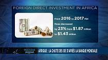 African and global FDI inflows weaken in 2017 says UNCTAD [Business Africa]