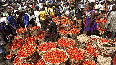 Au Nigeria, les conflits intercommunautaires menacent l'agro-économie
