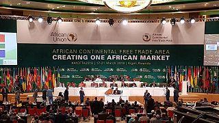 L'Afrique du Sud rejoint la Zone de libre-échange continentale