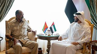 Eritrea president discusses regional developments, investment with UAE Crown Prince