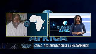 CEMAC zone: New rules for microcredits [Business Africa]