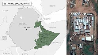 Ethiopia's Somali region frees all political prisoners from Ogaden jail