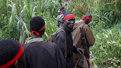 Soudan du Sud : l'ONU impose un embargo sur les armes