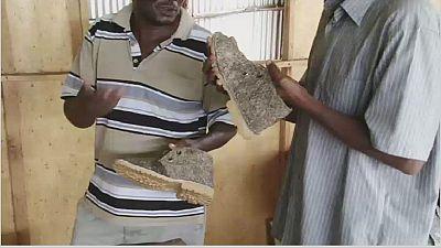 Le cuir de poisson, le pari fou d'un tanneur kenyan