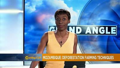 Mozambique's Gile reserve battling to survive deforestation [The Morning Call]