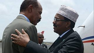 Somalia president visits Eritrea: peace, development on the agenda