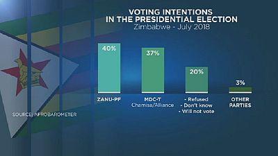 Zimbabwe voter intentions