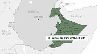 Crisis in Ethiopia's Somali region taking ethnic twist - ONLF worried
