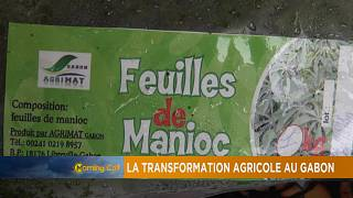 Gabon's agricultural transformation [The Morning Call]