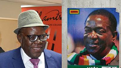 Zimbabwe president helps top opponent 'get bail'