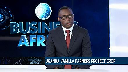 Uganda vanilla farmers arm themselves to protect lucrative crop [Business Africa]