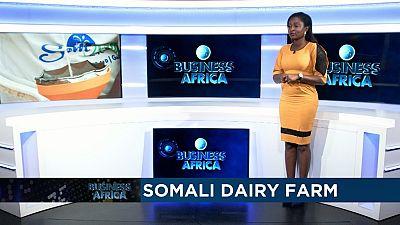 Le baobab africain au coeur d'un juteux commerce mondial [Business Africa]