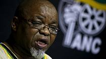 South Africa's ruling party chair backs calls for land expropriation