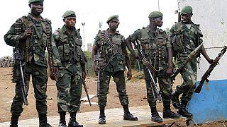 RDC: offensives contre des groupes armés dans l'est (Fardc)