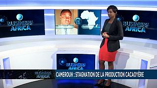 Cameroun : stagnation de la production cacaoyère