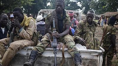 Central Africa's armed groups want blanket amnesty, plus 96 other demands