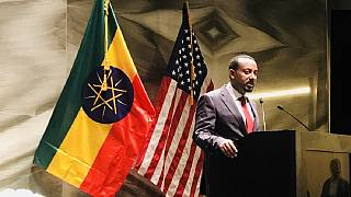 Ethiopia PM's diaspora tour: diplomatic, economic and unity dividends