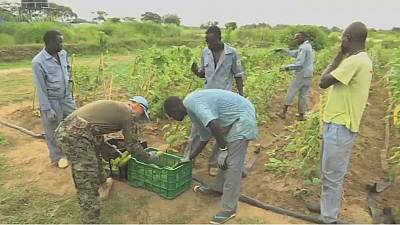 South Sudanese youths empower themselves through food production