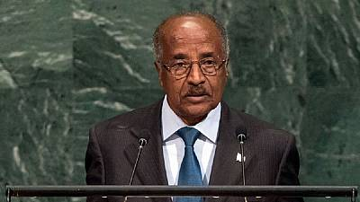 Eritreans free to return home voluntarily – Foreign Minister