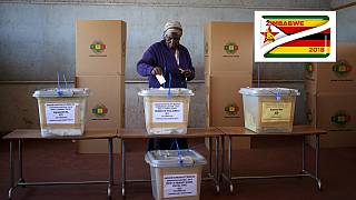 Zimbabwe 2018 vote: Mugabe, post-election crisis, failed poll petition