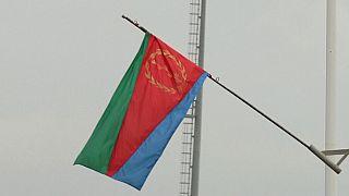US, France must quickly lift UN sanctions on Eritrea – Ex-US diplomat