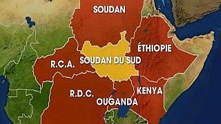 Éthiopie - Soudan du Sud: en avant pour une paix durable