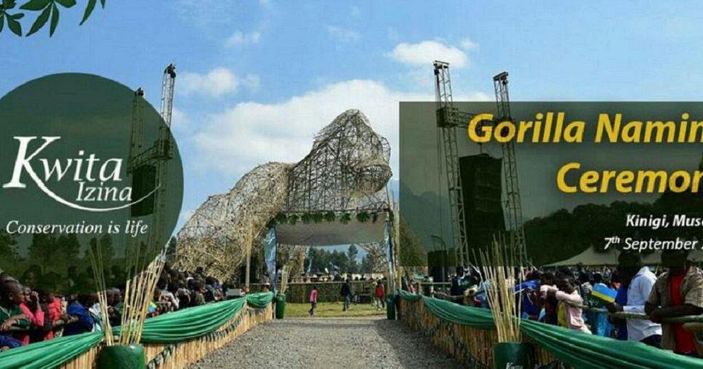 Akon, Obasanjo to lead celebrities at gorilla naming ceremony in Rwanda