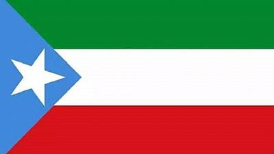 Ethiopia's Somali regional parliament restores flag, amends name
