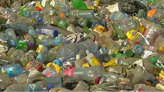 East African plastic manufacturers step-up recycling after China ban