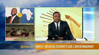 Africa enviroment partnership forum opens in Nairobi [The Morning Call]