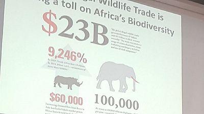 Afrique - Environnement : la dégradation des écosystèmes en débat à Nairobi