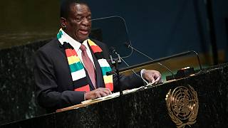 Mnangagwa to consider voting rights for Zimbabweans in diaspora