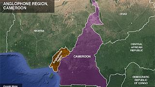 Canada issues Cameroon travel advisory over rising insecurity