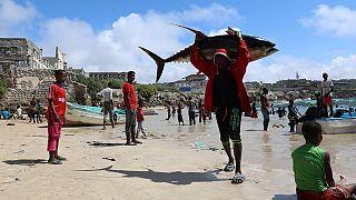 Après la Banque mondiale, l'UE apporte un appui financier à la Somalie