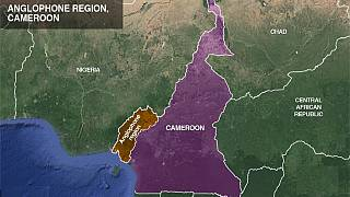 Cameroon Anglophone crisis: Major incidents over a deadly year (1)