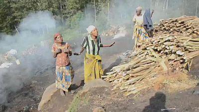 RDC : Cinq femmes violées dans le parc des Virunga