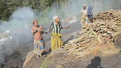 National rangers accused of rape in DRC's Virunga park