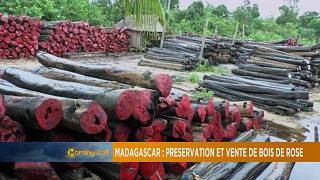 Madagascar defends plan to audit, sell its precious wood [The Morning Call]